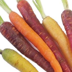 Colored Carrots | California