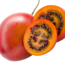 Red Tamarillo | New Zealand